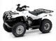250 FOURTRAX 2009 TRX250TE9